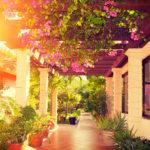 Idealny ogród – jak go urządzić?