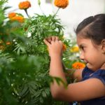 Ogród zabawy i nauki dla dziecka