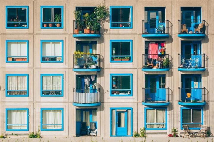 jak sadzić zioła na balkonie?