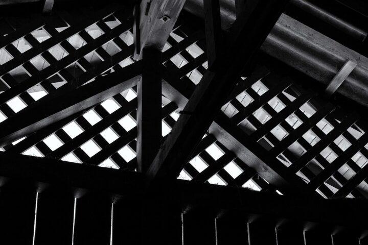 odgłosy kuny na strychu