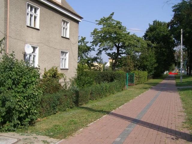 Dom na sprzedaż Gogolin - 3