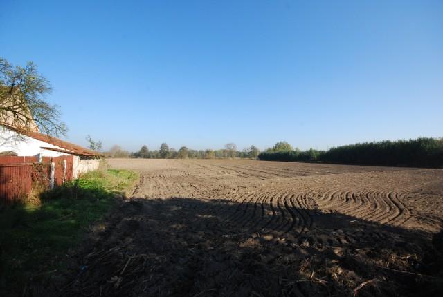 Dom na sprzedaż Stare Siołkowice - 10