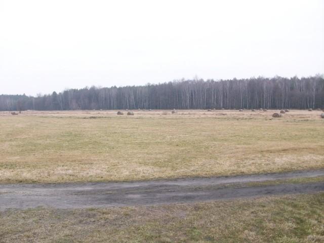 Działka na sprzedaż Antoniów - 2