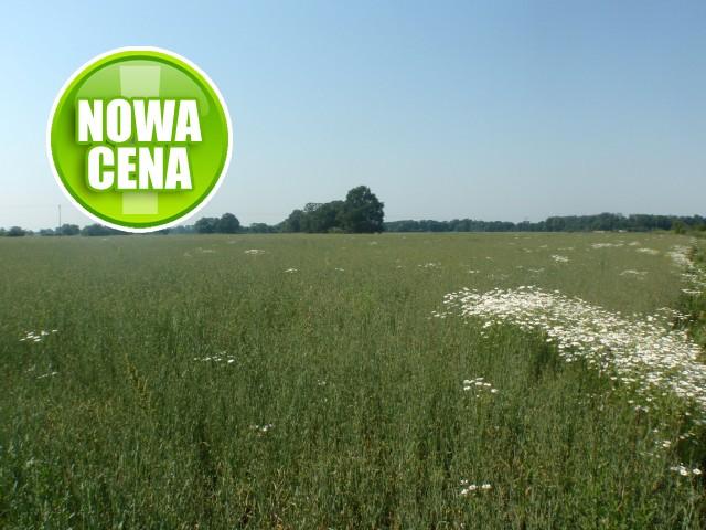 Działka na sprzedaż Wrocław - 1